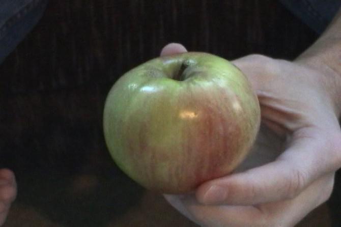 Knacken Sie einen Apfel in der Hälfte mit bloßen Händen