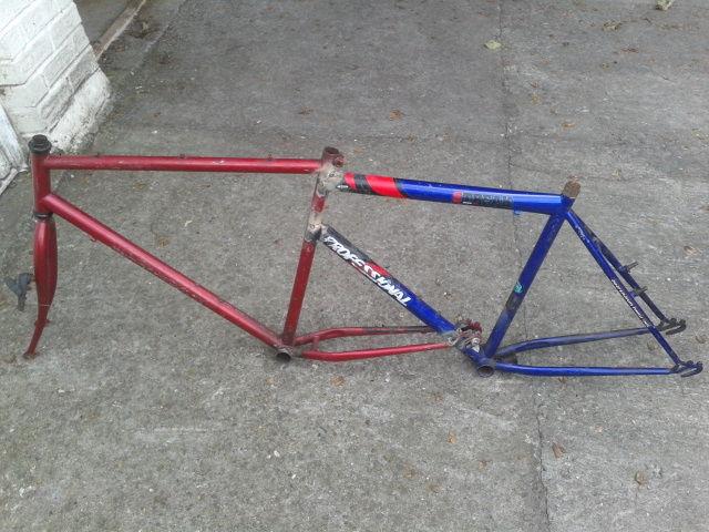 "Die Twins Bike aka The ""TWINGO"""