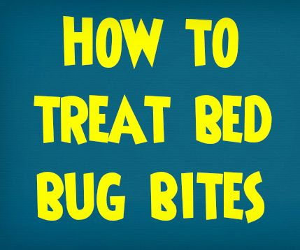 Alle Freizeitangebote Bed Bugs!  Wie man von Bed Bugs and Fun Bug themed Projekte Get Rid