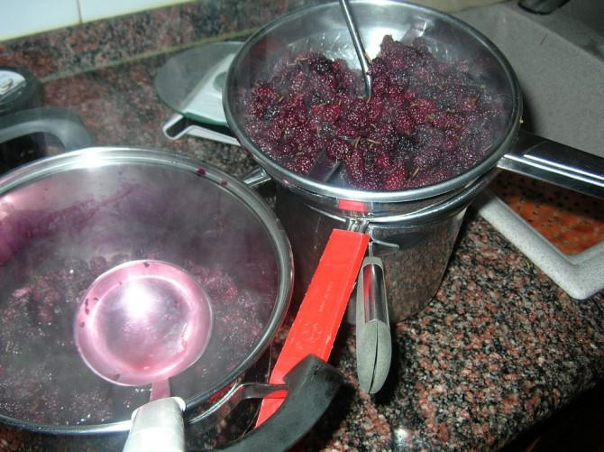 Meine Mulberry Cordial