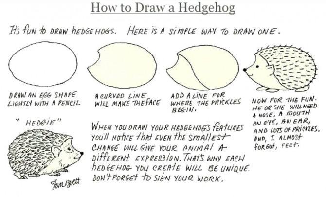 Das Entscheidende Hedgehog