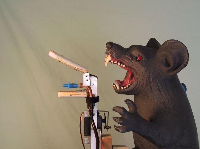 Animatronic-Ratte