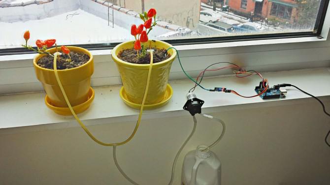 APIS - Automatisierte Anlagen Bewässerungssystem