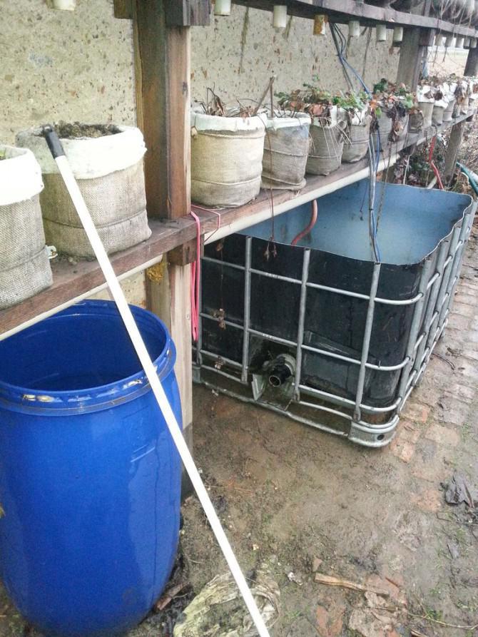 Nook Garten - Selbstbewässerungsanlage (+ April-Update)