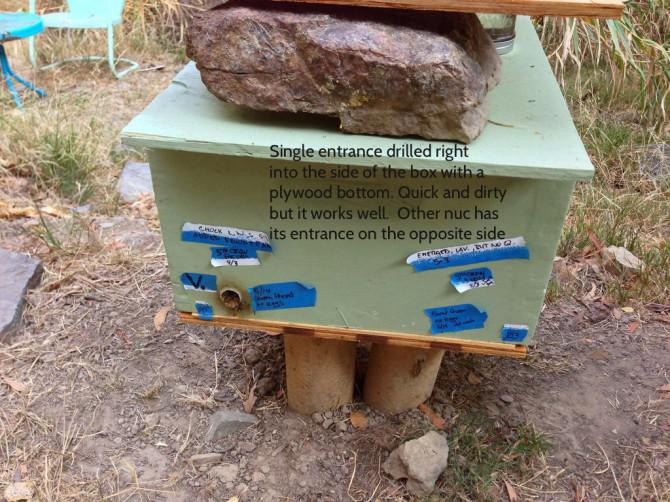 Wie man ein Nucleus Bienenvolk Stellen (und zu verhindern, gegründet Bienenstöcken von Schwarm)