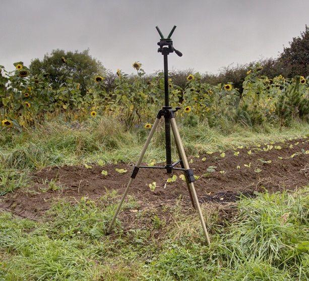 Geschmorte Wildkaninchen Stewardship Vom Feld auf den Tisch