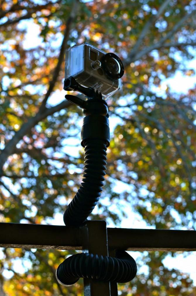 CameraSnake Fotos