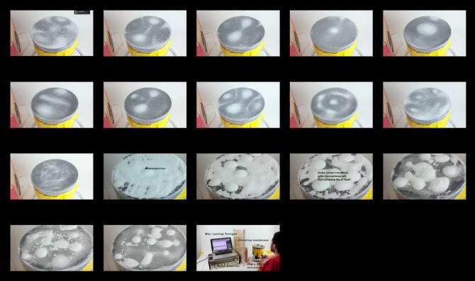 Wie man ein Chladni Platte (schwingende Membran) zu machen